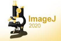 Download ImageJ 2021 Latest Version